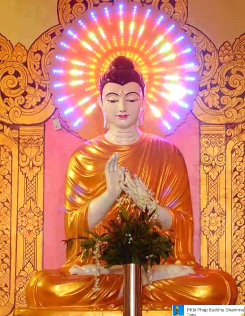Đạo Phật Nguyên Thủy - Kinh Tăng Chi Bộ - Đừng ái luyến