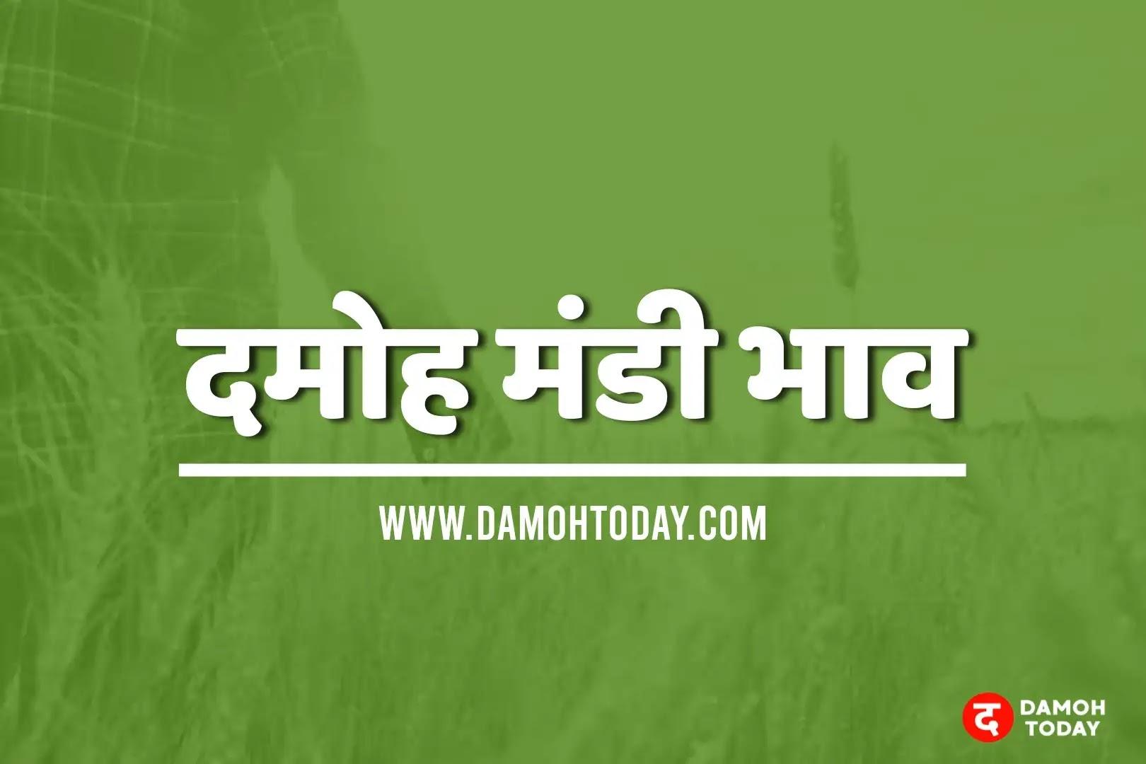 damoh mandi bhav today