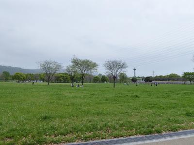 深北緑地公園 芝生広場