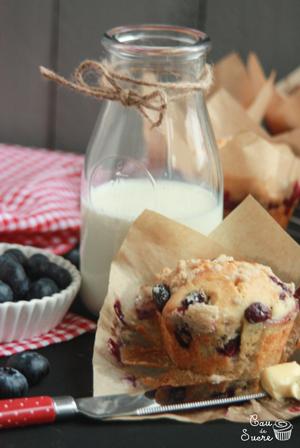 recetario-dulce-19-recetas-arandanos-muffins