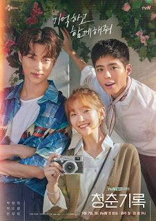 Record of Youth Episode 8 Subtitle Indonesia