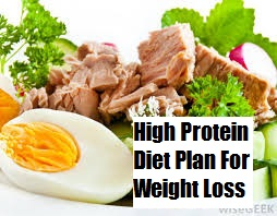 fat loss high protein diet plan