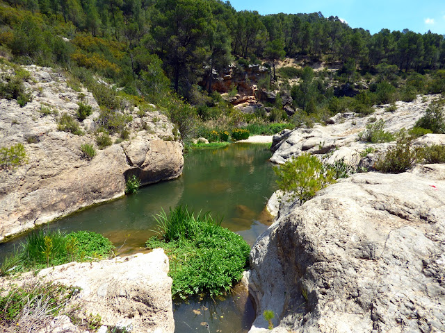 Río Magro