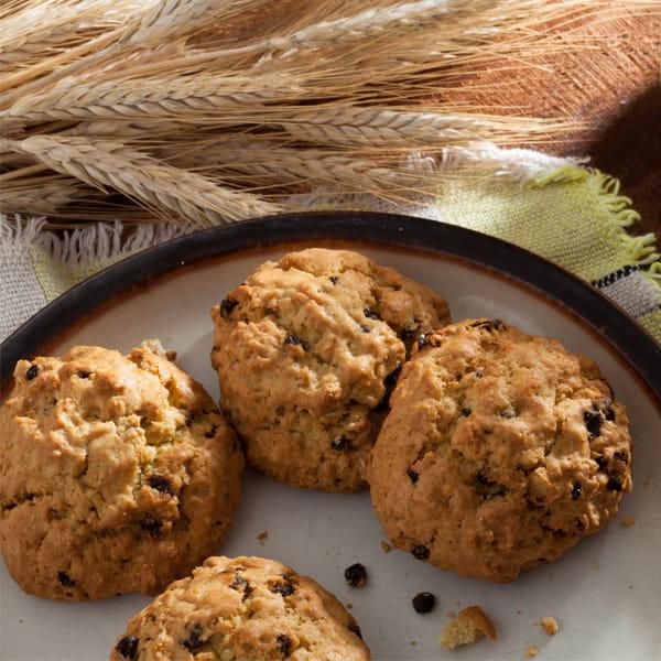 Biscuits-a-lavoine-sans-gluten