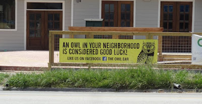 An owl in your neighborhood is considered good luck