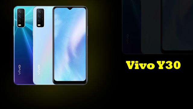 Harga dan Spesifikasi Vivo Y30 Edisi Standar
