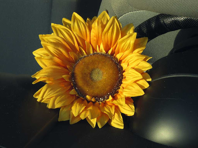 Fake sunflower on the dashboard of a parked car, Livorno