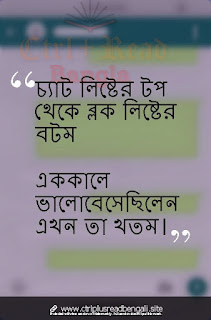 Bengali Sad Sayari
