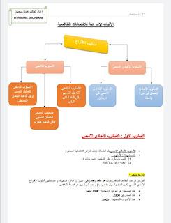 القانون الدستوري أساليب الإقتراع pdf