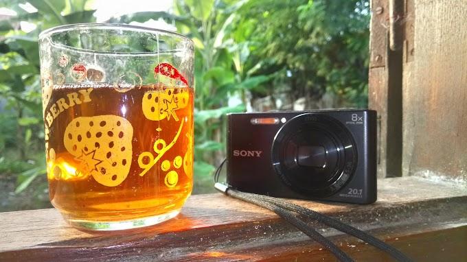 Pengalaman Pakai Kamera Saku Sony DSC W830