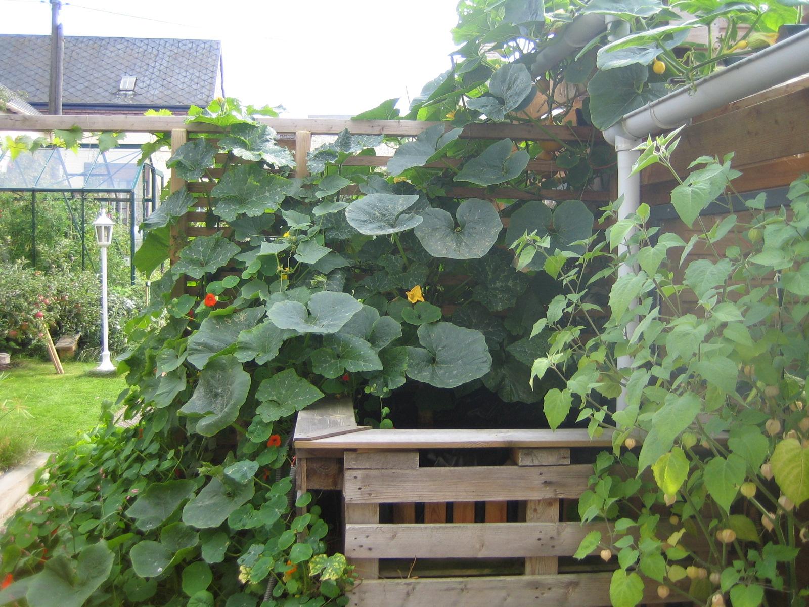L 39 atelier des herbes folles for Jardin urbain permaculture