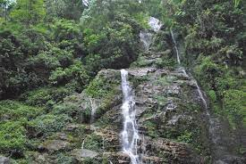 things to do in pelling