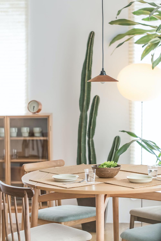 Decorar con cactus, las plantas con superpoderes_22