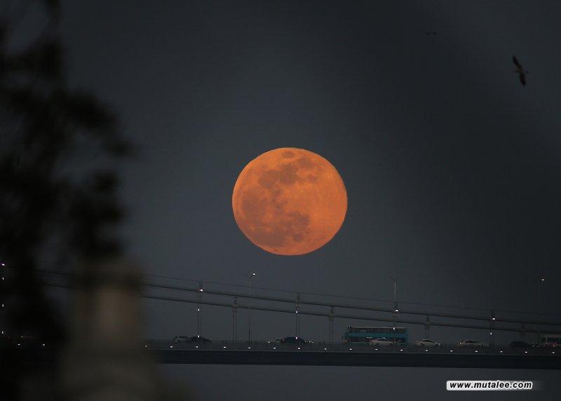القمر العملاق الأول لعام2021 ..  ينير سماء العراق اليوم؟القمر العملاق الأول لعام2021 ..  ينير سماء العراق اليوم؟