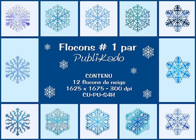 Flocons # 1 - CU