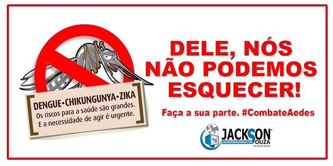 Zika, Dengue, Chikungunya e outros surtos que devemos manter os cuidados. Fique atento!