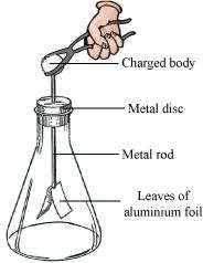 Electroscope Science 8th
