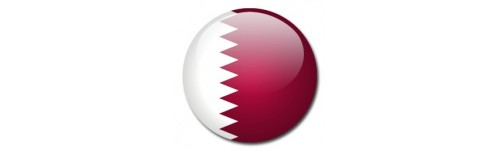 Access Blocked Sites in Qatar