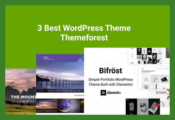 3 Best WordPress Theme Themeforest