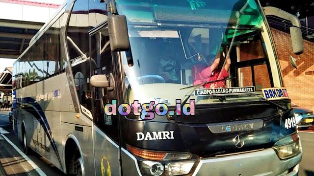 Jadwal Bus Damri Purwakarta Bandara Soekarno Hatta Tarif Ongkos dan Jadwal Rute Perjalanan
