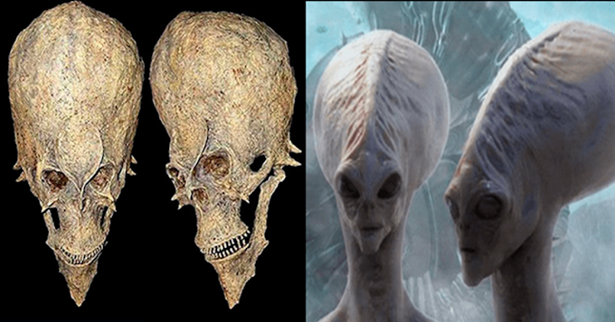 The Strange Alien Skulls Discovered in Africa Could Change The History As We Know It