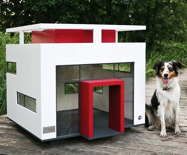 Bauhaus Dog House