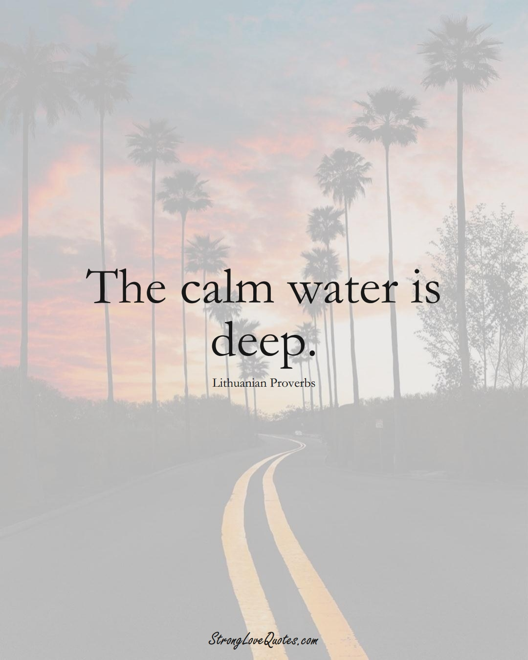 The calm water is deep. (Lithuanian Sayings);  #AsianSayings