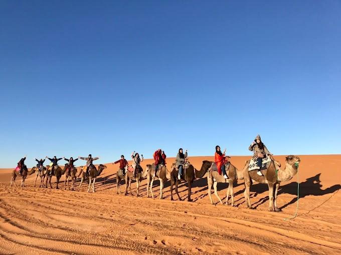 2 nights camel trek in Merzouga Sahara