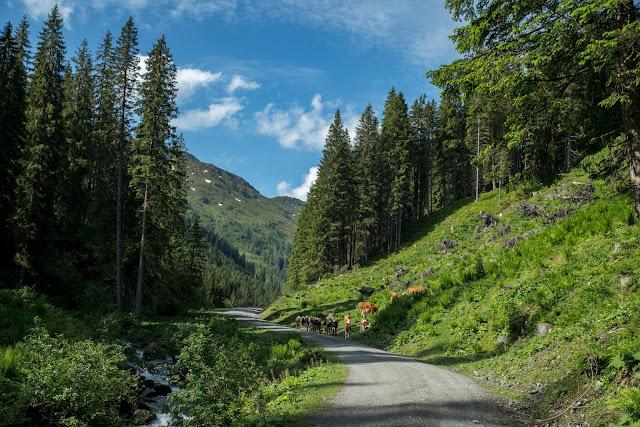 Bergtour Geißstein | Wandern Saalbach | Wanderung SalzburgerLand | Bergwanderung im Glemmtal 06