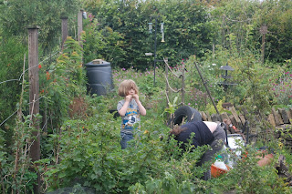 gardening with children, life on pig row