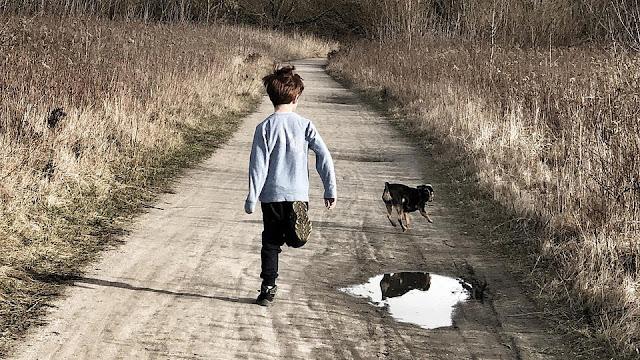 """""""Мы или собака"""": подросток ушел от мамы и отчима вместе с псом"""