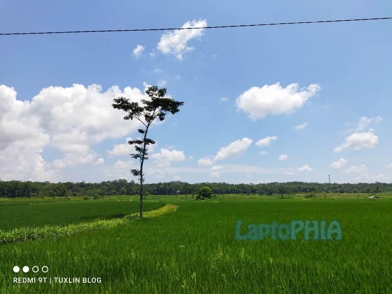Hasil Foto Kamera Xiaomi Redmi 9T