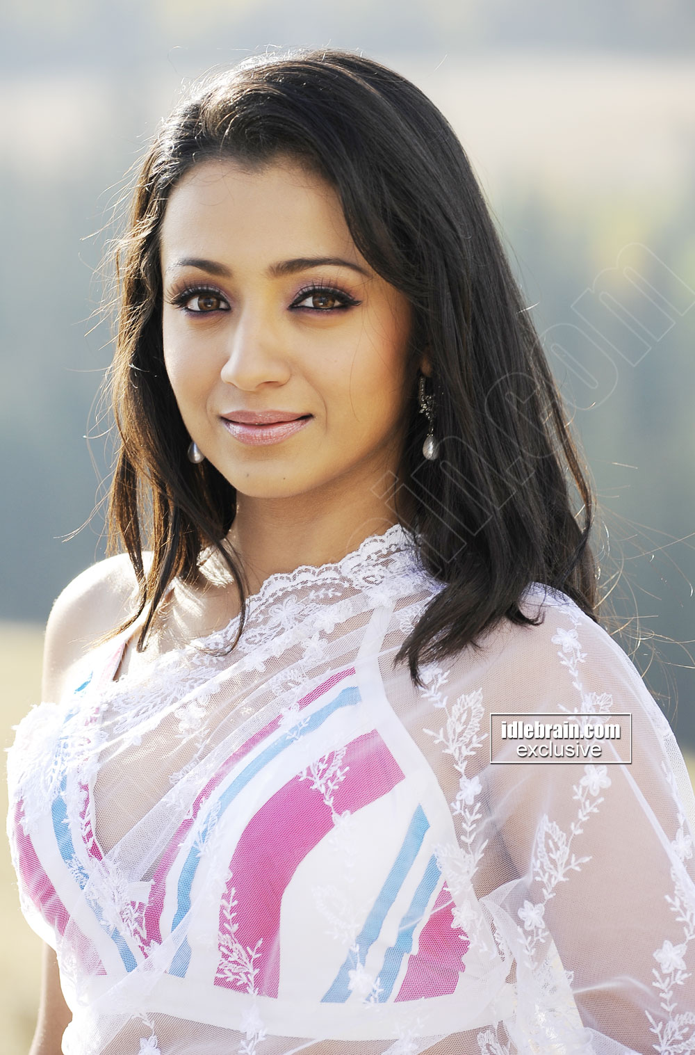 Trisha looking hot in saree