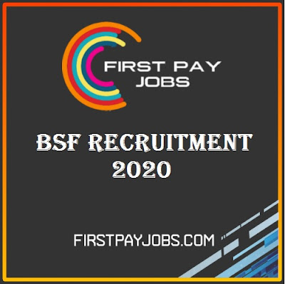 BSF Recruitment 2020, Apply For 167 Post
