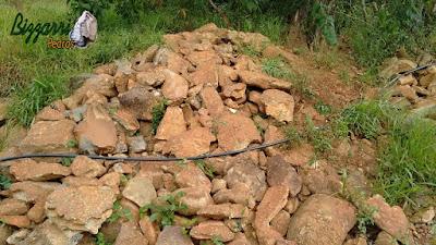 Pedra para parede de pedra, tipo pedra moledo nesse tom de cor de pedra avermelhado com tamanhos variados.