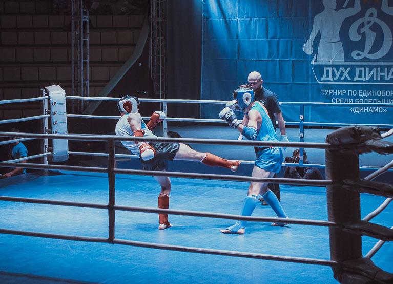 II турнир по единоборствам «Дух Динамо»