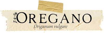 oregano, herbalism, herbal remedy, magic, witchcraft, herb magic, green witchcraft, hedgewitch, herb magic, herb magick, magick, magic, occult, wicca, wiccan, pagan, neopagan