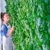 Plenty, a startup agrícola que que angariou 200 milhões de dólares de investidores como a Amazon e o Google