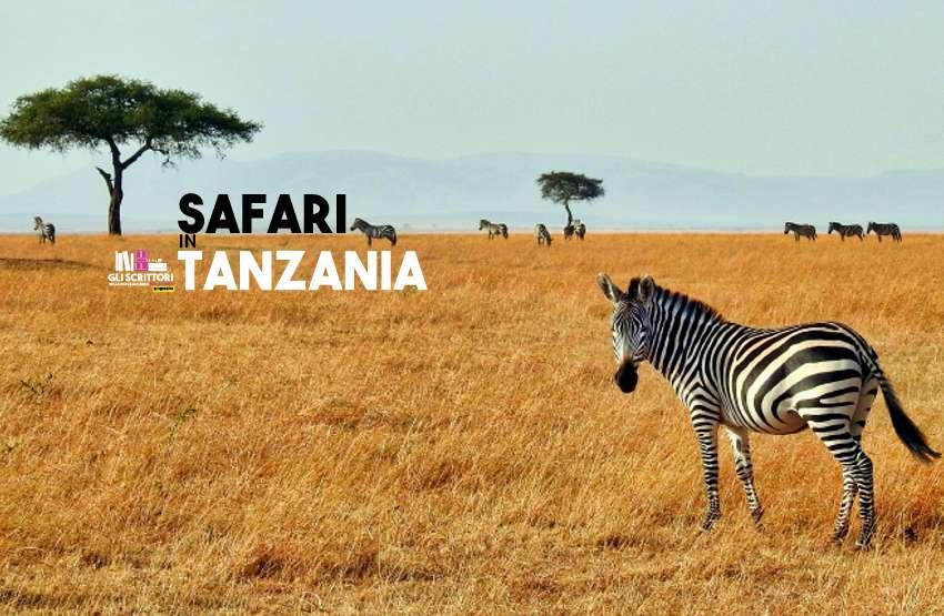 Safari in Tanzania: quali parchi scegliere?