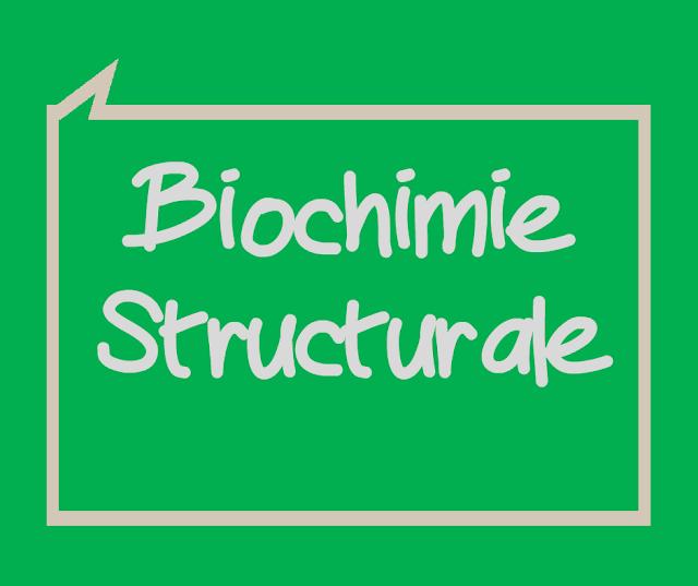 Cours et Résumé Biochimie Structurale