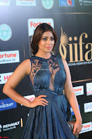 Shriya Saran in Beautiful Transparent Dark Gown IIFA Utsavam Awards 2017 012.JPG