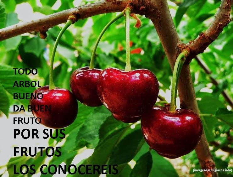 los frutos del espiritu versiculo