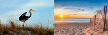 Gulf Shores AL Condos For sale and Vacation Rental Homes By Owner