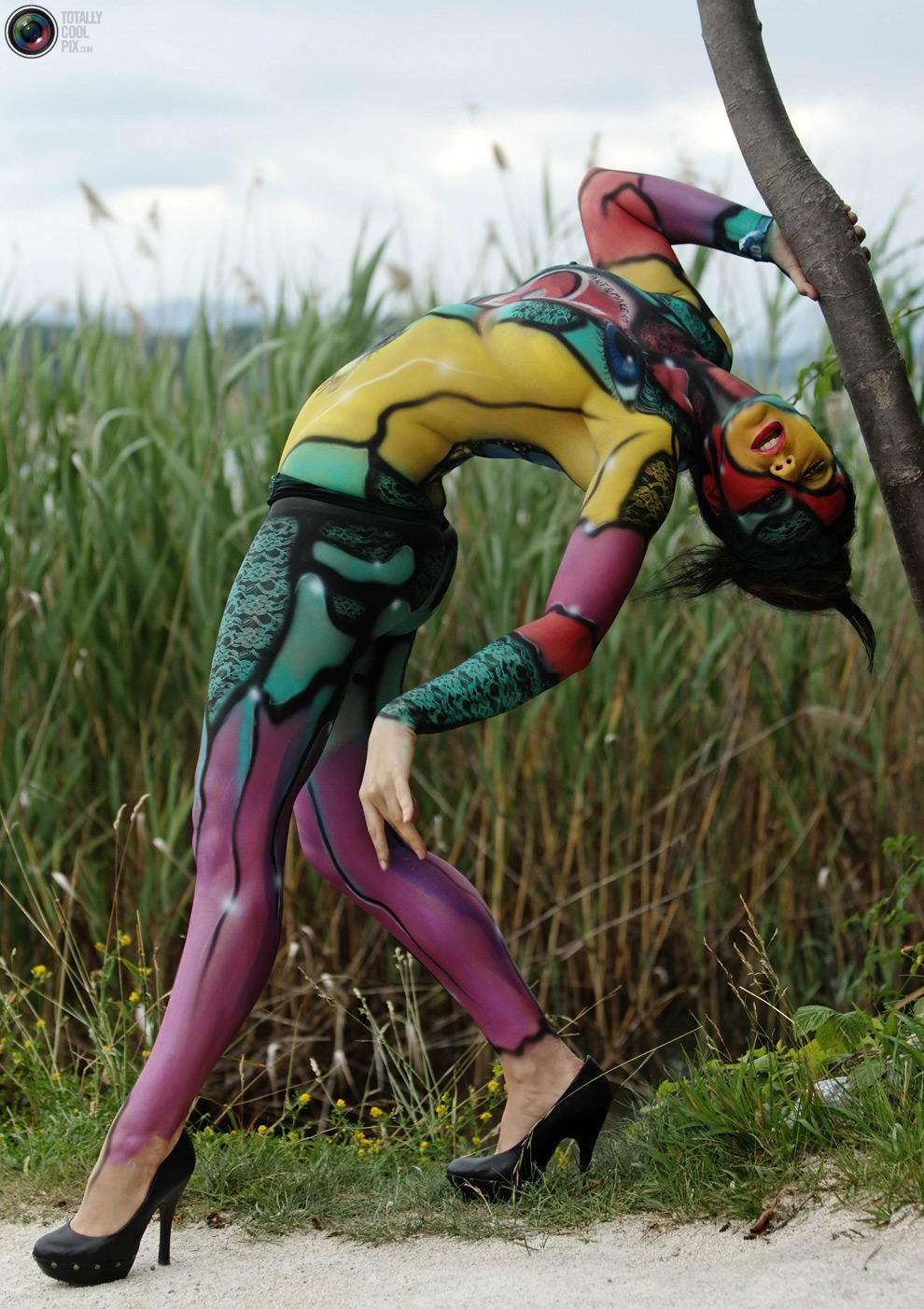 World Bodypainting Festival  Body Painting,2014Cars,Hot -3955