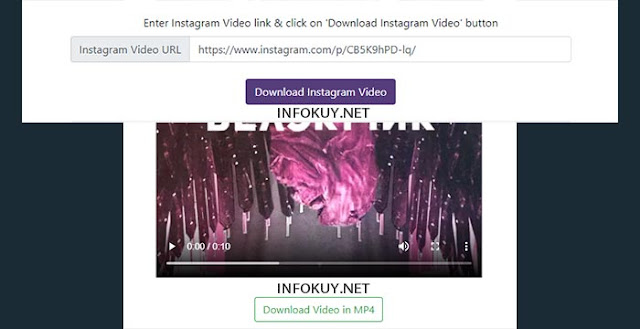 downloadinstagramvideos