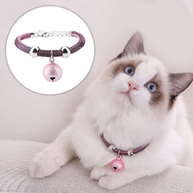 unique cat collars and tags