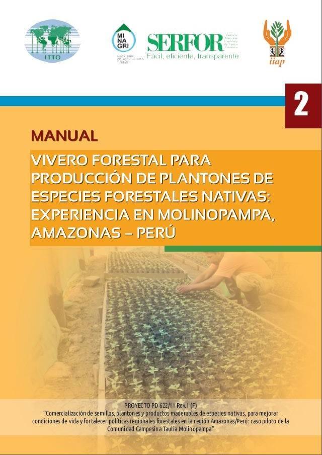 Vivero forestal para producci n de plantones de especies for Proyecto productivo de vivero forestal