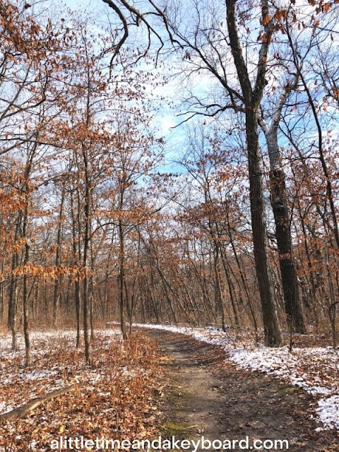 Path through the winter woods at Kishwaukee Gorge North Forest Preserve in Rockford, Illinois
