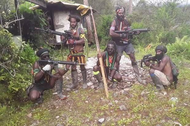 TPNPB OPM Akui Sejak Lama Beli Senjata dari Aparat RI, Didatangkan dari Jakarta Pakai Hercules