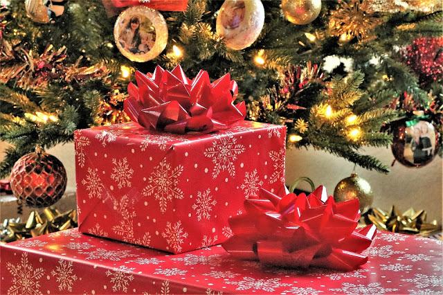 Quelques idées cadeau pour jardiniers et jardinières pour Noël